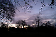 Evening sky through silhouette of trees in Highbury Park in Kings Heath on 30th December 2020 in Birmingham, United Kingdom. Highbury Park is a wooded area located on the borders between Moseley and Kings Heath.