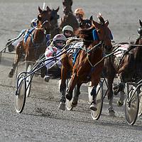 Harness Racing Flamboro Downs