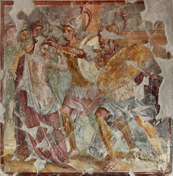 Fresco panel of Helen and Menelaus, with Menelaus grabbing Helen, from the East wall of the Triclinium, probably used for lunches, a large room open to the garden, with walls painted on a white background with figures and plants and ornamental borders and floating figures of the seasons, in the Casa dell Efebo, or House of the Ephebus, Pompeii, Italy. This room is decorated in the Fourth Style of Roman wall painting, 60-79 AD, a complex narrative style. This is a large, sumptuously decorated house probably owned by a rich family, and named after the statue of the Ephebus found here. Pompeii is a Roman town which was destroyed and buried under 4-6 m of volcanic ash in the eruption of Mount Vesuvius in 79 AD. Buildings and artefacts were preserved in the ash and have been excavated and restored. Pompeii is listed as a UNESCO World Heritage Site. Picture by Manuel Cohen