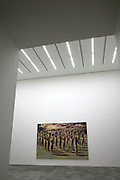 gallery with artwork and lighting