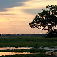Africa, Botswana, Savute. Savute sunset in Chobe National Park.