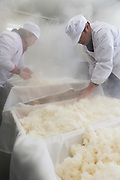Staff help steamed rice cool at Nekka Shochu Distillery, Tadami, Fukushima, Japan, February 22, 2018. The Nekka shochu distillery was founded in July 2016 and at that time was the smallest shochu distillery in Japan. It makes shochu from locally-grown rice, and is helping support a local economy that has languished since the nuclear disaster of 2011.