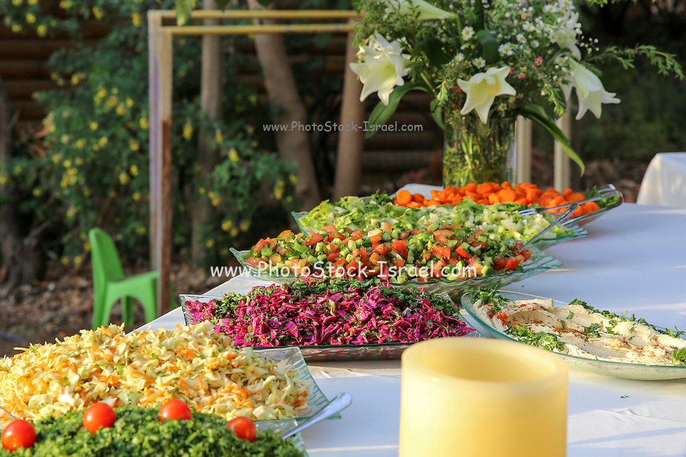 Outdoor catering. A salad bar on a buffet table