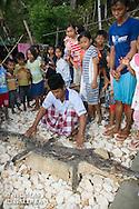 Pecheur présentant une peau de crocodile marin<br /> <br /> Crocodile marin, Crocodylus porosus, dans le village de Bonebone dans les iles Banggais aux Sulawesis en Indonésie - Mission Banggai Cardinal Fish, Mai 2008, Act for Nature - Musee oceanographique de Monaco