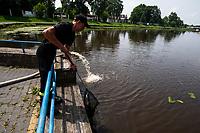 Wasilkow, woj. podlaskie, 14.07.2021. Przyducha ryb na rzece Suprasl. Strazacy z OSP prowadza akcje natleniania wody, po tym, jak z rzeki Suprasl w ciagu kilku dni wylowiono ponad dwie tony snietych ryb. Przyduche, czyli brak tlenu w wodzie, spowodowala fala upalow oraz splywajace, wraz z deszczem do rzeki, substancje organiczne, m.in nawozy rolnicze. N/z strazak wyciaga z wody sniete ryby fot Michal Kosc / AGENCJA WSCHOD
