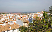 Whitewashed historic buildings in the town of Antequera,  Malaga province, Spain