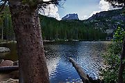 USA, Colorado, Rocky Mountain National Park, vandalised tree at Bear Lake, digital composite, HDR
