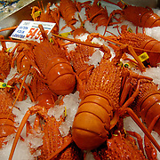 The Sydney Fish Market. Red lobsters sold by chinese people.