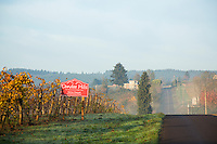 Wine country near Dundee, Oregon.