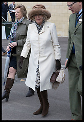 March 13, 2019 - Cheltenham, United Kingdom - Image licensed to i-Images Picture Agency. 13/03/2019. Cheltenham , United Kingdom. The Duchess of Cornwall during Ladies Day on the second day of the Cheltenham Festival  (Credit Image: © Stephen Lock/i-Images via ZUMA Press)