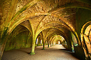 Gothic arches of the great hall of Fountains Abbey , founded in 1132, is one of the largest and best preserved ruined Cistercian monasteries in England. The ruined monastery is a focal point of England's most important 18th century Water, the Studley Royal Water Garden which is a UNESCO World Heritage Site. Near Ripon, North Yorkshire, England .<br /> <br /> Visit our MEDIEVAL PHOTO COLLECTIONS for more   photos  to download or buy as prints https://funkystock.photoshelter.com/gallery-collection/Medieval-Middle-Ages-Historic-Places-Arcaeological-Sites-Pictures-Images-of/C0000B5ZA54_WD0s