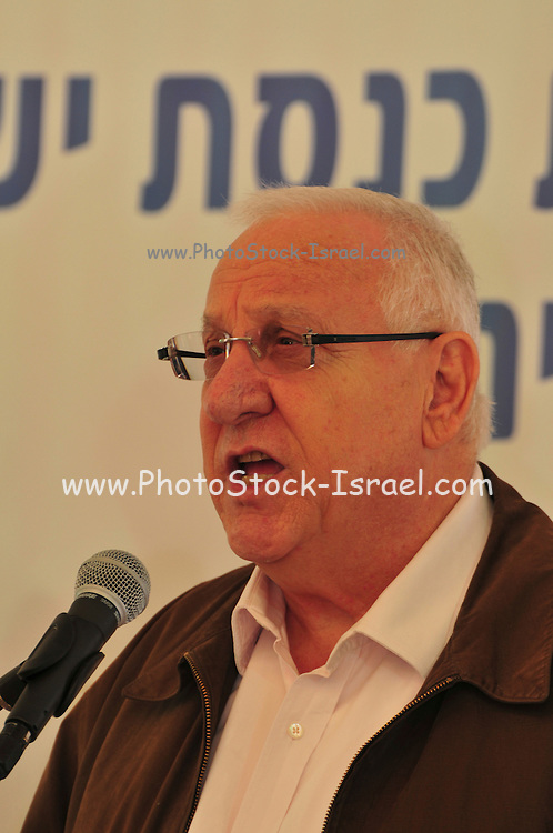 """Israel, Mount Carmel, Isfiya, Jewish National Fund has organised a mass tree planting in the burnt Carmel forest for Tu Bishvat. Reuven """"Rubi"""" Rivlin (born 9 September 1939) The speaker of the Knesset"""