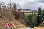 Teviothead, Hawick, Scottish Borders, Scotland, UK. 22nd March 2021. Gideonscleuch in the upper Teviot valley.