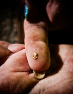 A piece of gold on the fingers of a worker in the West Australian Goldfields.