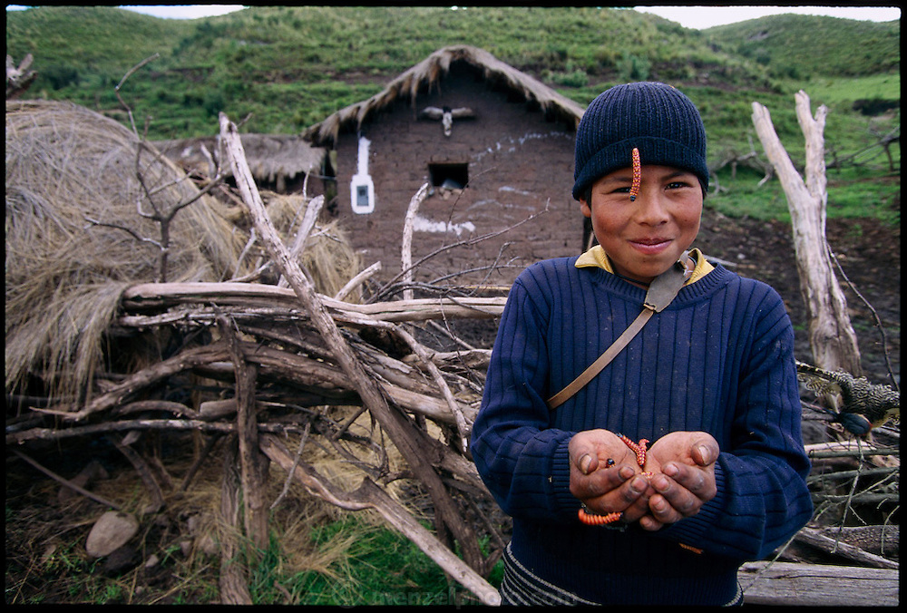 PER.meb.18.xxs.Fredi Molo Cruz toys with waykjuiro worms. Ocra Katunki, Peru. (pages 154,155)