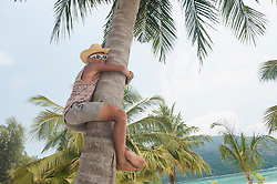 Teenage boy climbing palm tree, Koh Lipe, Thailand