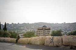 2 May 2016, Bethlehem, Palestine: Boy sitting on a wall in Bethlehem.