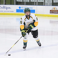 2nd year defence man Kaitlyn Crowe (16) of the Regina Cougars in action during the Women's Hockey home game on February 9 at Co-operators arena. Credit: Arthur Ward/Arthur Images
