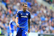 Kenneth Zohore of Cardiff city looks on. Skybet football league championship match, Cardiff city v Bolton Wanderers at the Cardiff city Stadium in Cardiff, South Wales on Saturday 23rd April 2016.<br /> pic by Andrew Orchard, Andrew Orchard sports photography.
