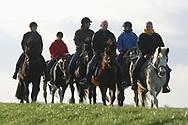 Buitendijks paardendrama bij Marrum