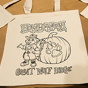 GREAT WOLF LODGE AT GRAND HYATT NYC 10/15/14