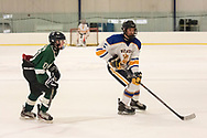 own of Newburgh, New York - Washingtonville plays Cornwall in a Hudson Valley High School Ice Hockey Association varsity game at Ice Time Sports Complex on Dec. 29, 2018.