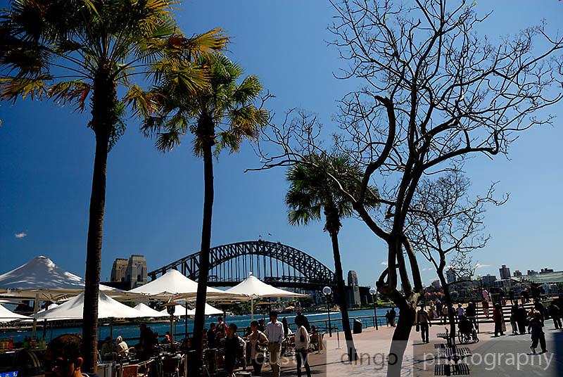 Harbour-side restaurant, with Sydney Harbour Bridge in background. Circular Quay, Sydney, Australia