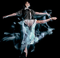 one caucasian woman modern ballet dancer dancing woman studio shot isolated on black bacground