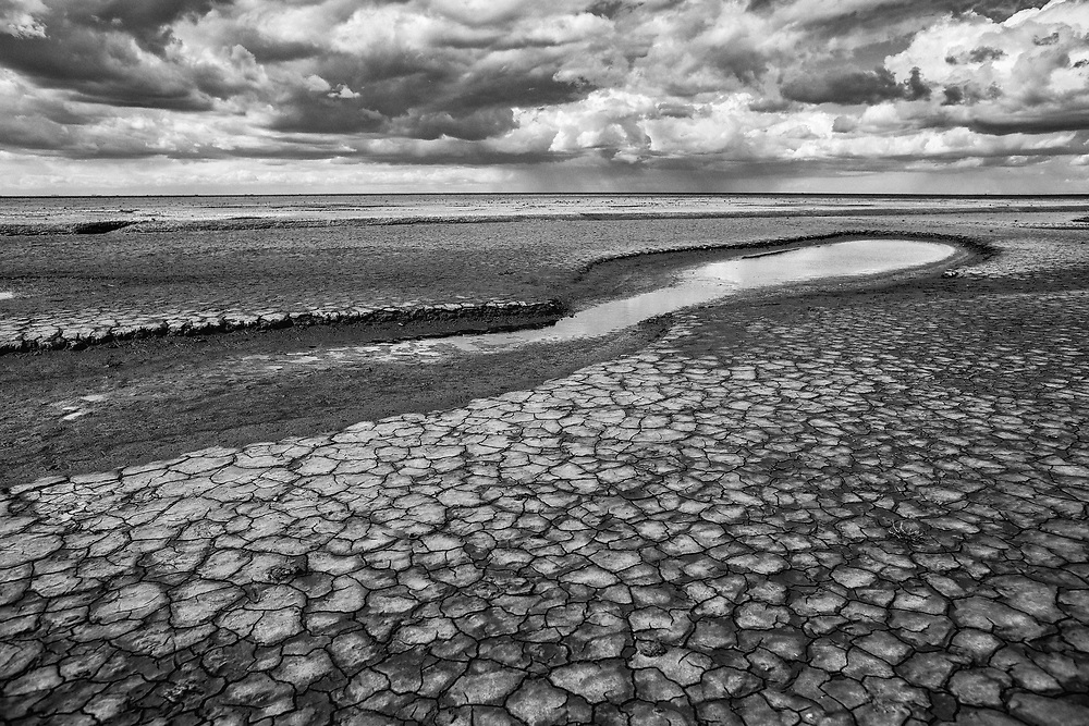 August 2018 - The Wash , UK - Unearthed story on lack of monitoring of the salt marshes designated as SSSI's  around The Wash and the North Norfolk Coast - Mudflats on the Wash at Snettisham