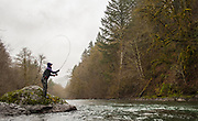 Oregon steelhead guide Kate Taylor delivers spey bomps in search of migrating winter steelhead.