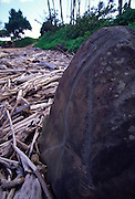 Petroglyph, Wailua, Kauai, Hawaii<br />