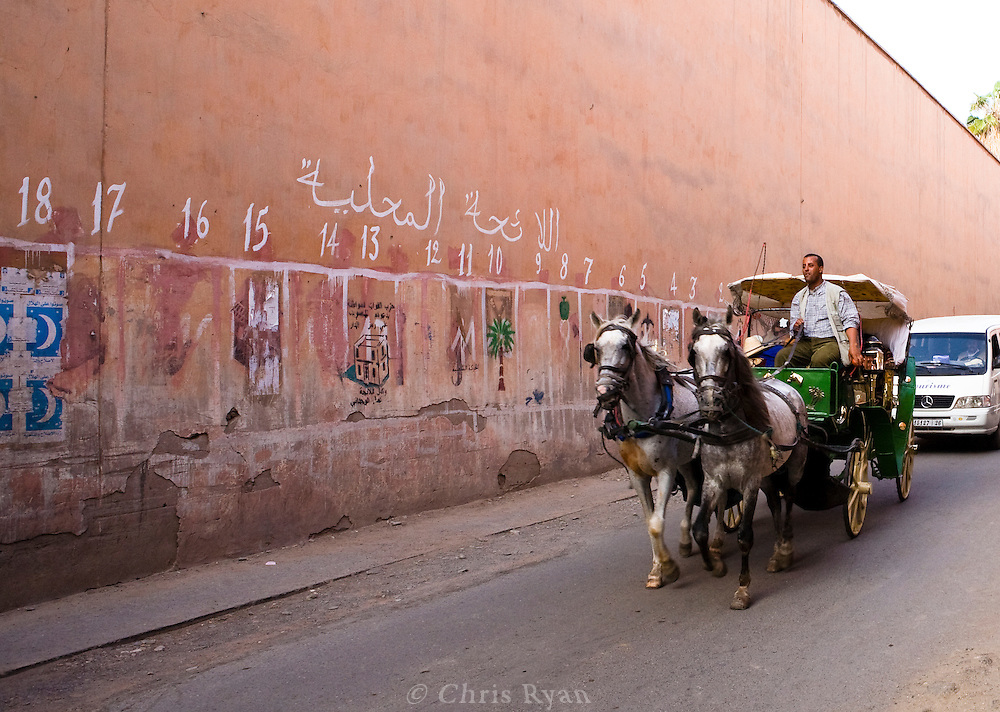 Horse-drawn carriage in front of mural representing political parites, Marrakesh, Morocco