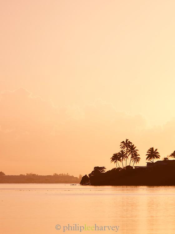 Palm trees silhouetted by the coastline at Kualoa Regional Park, O'Ahu, Hawai'i