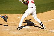 Photography of the 2011 Arkansas Razorback baseball team.