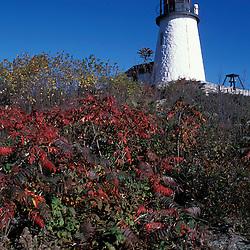 Burnt Island, ME.... The lighthouse on Burnt Island.  Fall.  Boothbay Harbor