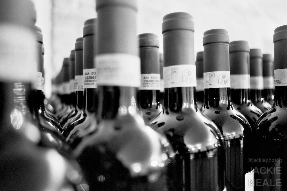 The family takes the Carmignano wine tour