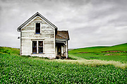 Abandoned farmhouse in farm field, Palouse Country, Washington