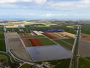 Nederland, Noord-Holland, Gemeente Zijpe, 16-04-2012; Zijpe- en Hazepolder, de Polder E, ten noorden van Schagen. Bloembollenvelden en de spoorlijn naar Den Helder..Polder in the north of the province Noord-Holland, dating from the 16th century. Flower bulb fields and cultivation..luchtfoto (toeslag), aerial photo (additional fee required);.copyright foto/photo Siebe Swart