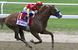 June 9, 2018 - Elmont, New York, U.S - Jockey MIKE SMITH aboard JUSTIFY ahead in the stretch of the Belmont Stakes at Belmont Park in New York. They won the race, and Justify became the 13th horse in history to win the Triple Crown. (Credit Image: © Staton Rabin via ZUMA Wire)
