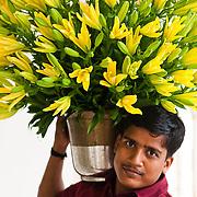 A hotel employee with flowers. The Verandah at the gracious Rambagh Palace Hotel, Bhawani Singh Rd, +91 141 221 1919, www.tajhotels.com