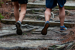 January 19, 2019 - Southern Pines, North Carolina, US - Jan. 19, 2019 - Southern Pines N.C., USA - Runners make their way up a steep incline towards the start/finish line completes a lap during the 10th Annual Weymouth Woods 100km ultra marathon at the Weymouth Woods Nature Preserve. Runners needed to complete 14 laps of the 4.47 mile course for 62.58 miles in under the 20-hour time allotment. (Credit Image: © Timothy L. Hale/ZUMA Wire)