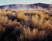 Steam rising from Virgin Valley Hot Springs, Sheldon National Wildife Refuge, Nevada.