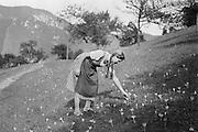 Girl Picking Flowers, Molln, Austria, 1935