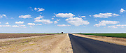 Rural road next  green early crop  field under blue sky with cumulus clouds near Jimbour Queensland, Australia <br /> <br /> Editions:- Open Edition Print / Stock Image
