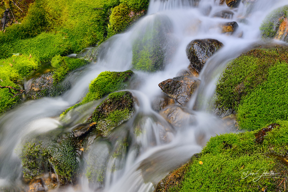 Mossy cascade, Yoho National Park, British Columbia, Canada