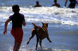 Young boy and his dog running into the ocean in Galveston, Texas