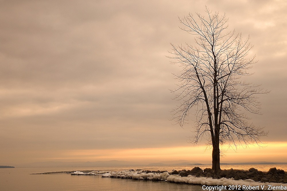 """""""Dawn at Ausable Point 2""""-An image of a tree on the point at Ausable Point State Park, Lake Champlain, New York."""