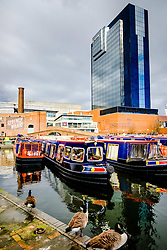Canal boats at Regency Wharf in the centre of Birmingham, England<br /> <br /> (c) Andrew Wilson | Edinburgh Elite media
