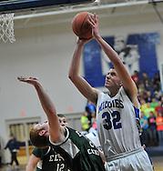 The Elyria Catholic boys varsity basketball team at Midview on January 24, 2012.