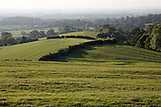Fields of pronounced Ridge and furrow patterns, Lower Coscombe Wood Stanway, Gloucestershire, England